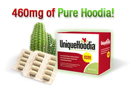 unique-hoodia2