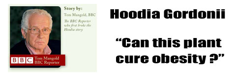 hoodia-and-the-bbc